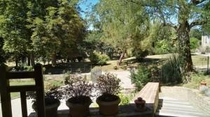 Un grand jardin clôturé.